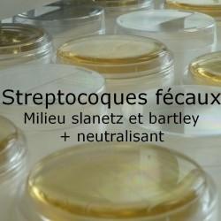 Boite de contact streptocoques fécaux.