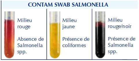 Lecture écouvillon swab salmonelle