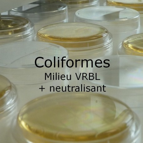 Boite de contact coliformes