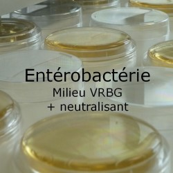 Boite de contact enterobacteries