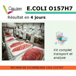 Kit Escherichia coli O157H7